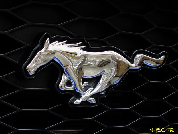 Galloping Horse 07092017