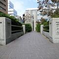 写真: 蒲田行進曲 松竹キネマ撮影所跡 24092017