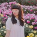 Photos: 少女と薔薇と夕暮れの日差し・・・