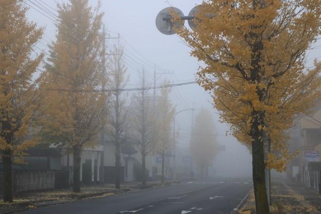 朝霧の久喜市街