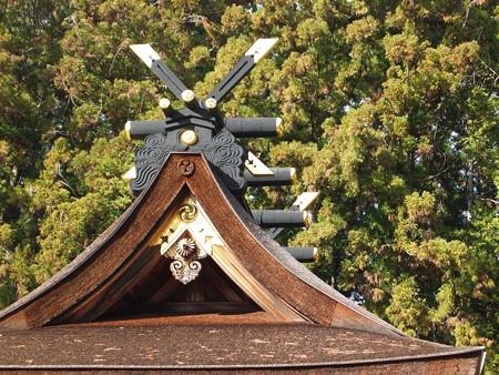 熊野本宮大社12