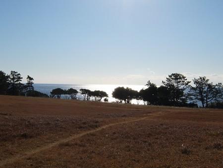 潮岬09 望楼の芝生