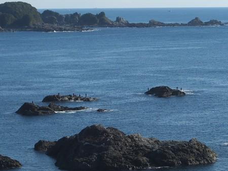 潮岬15 釣り人たち