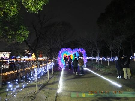 長居植物園ガーデンイルミネーション19