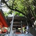 高塚愛宕地蔵尊 鐘堂(昼)