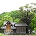 代太郎のお宮1