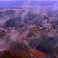 写真: 山中晶靈