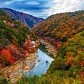 写真: 嵐山秋色