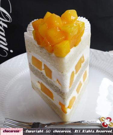 エクストラスーパーマンゴーショートケーキ(全体)