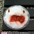 写真: 白蛇さまのかき氷