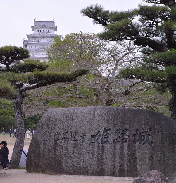 Photos: 姫路城!