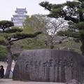 写真: 姫路城!