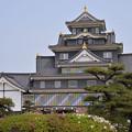 写真: 岡山城