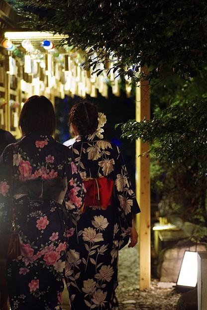 写真: 夏の夜(2)