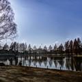 ある日の公園