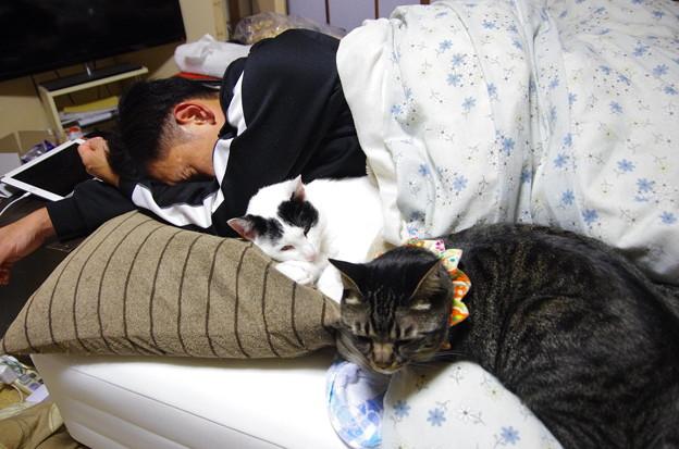写真: 添い寝