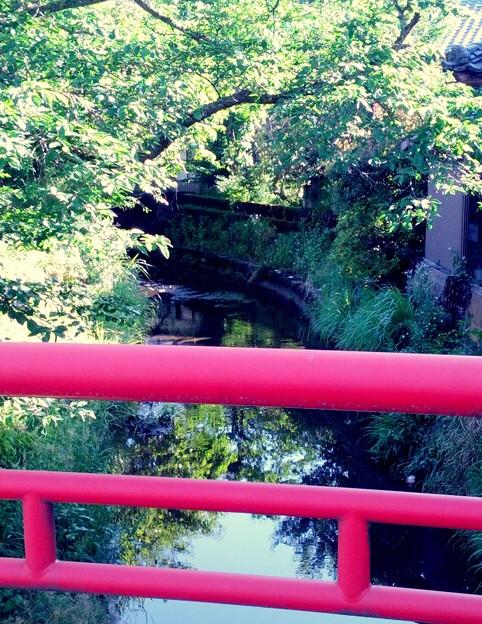 大門橋をながれるみどり