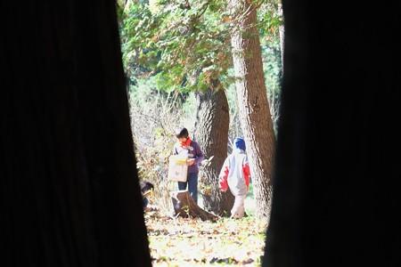 2014.12.03 瀬谷市民の森 野外授業