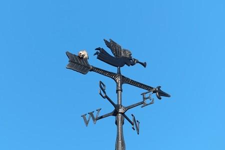 2014.12.13 追分市民の森 天使の風向計でスズメ 「かゅぃぃの」