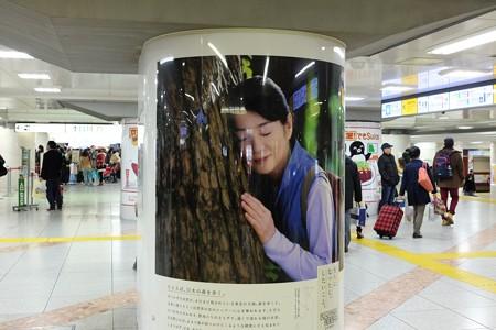 2015.01.01 東京駅 東北新幹線改札前
