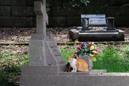 2017.04.10 外人墓地 桜の下で