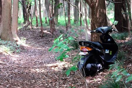 2017.05.31 瀬谷市民の森 バイク