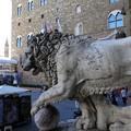 Photos: 2017.05.16 イタリア フィレンツェ 「獅子像」