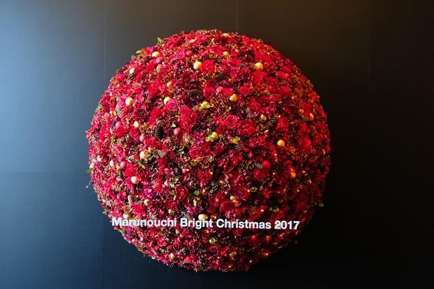 2017.11.21 丸の内ビルディング Christmas tree