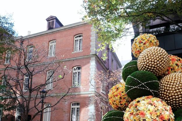 2017.11.21 丸の内ブリックスクエア 桜とChristmas tree