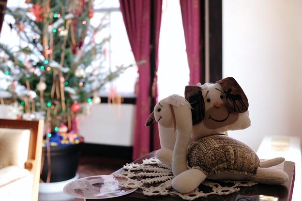 2017.12.12 山手西洋館 外交官の家 世界のクリスマス ルーマニア 亀と犬