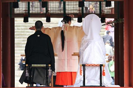 2010.03.05 鎌倉 八幡宮 巫女神楽を奏す