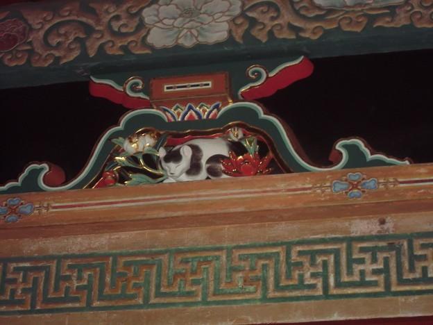 眠り猫 [国宝]
