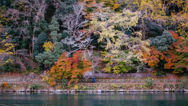 写真: 嵐山保津川河畔