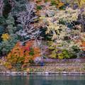 嵐山保津川河畔