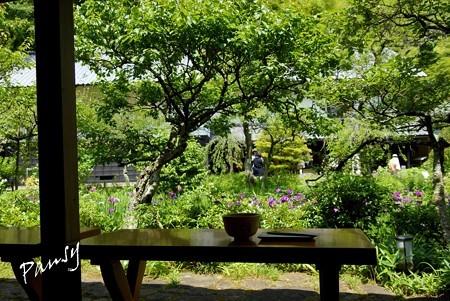 風待月の東慶寺・・35