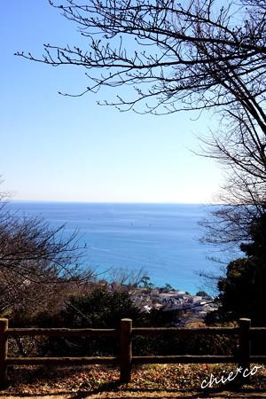 吾妻山公園-153
