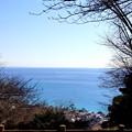 写真: 吾妻山公園-153