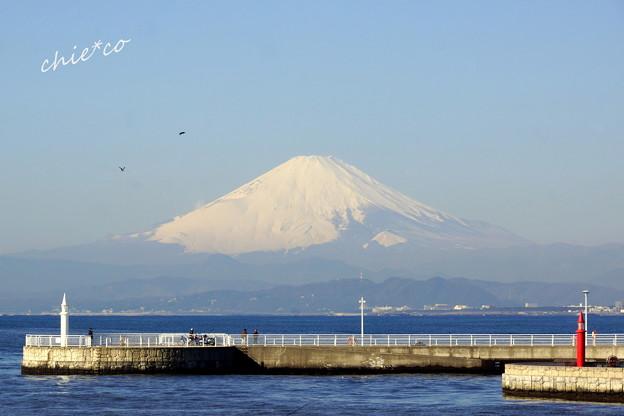 江の島-435