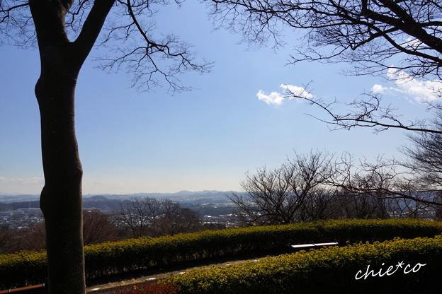 金沢自然公園-282