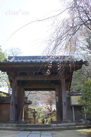 鎌倉-342