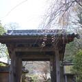写真: 鎌倉-342