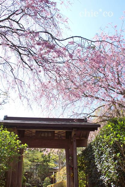 北鎌倉-386