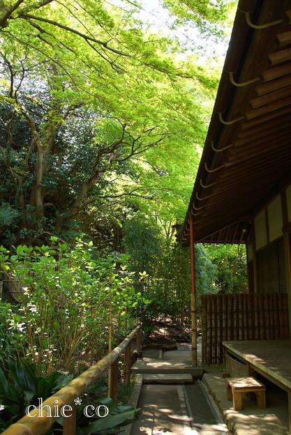 北鎌倉-430