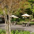 写真: 鎌倉-249