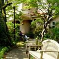 写真: 鎌倉-270
