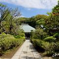写真: 鎌倉-282