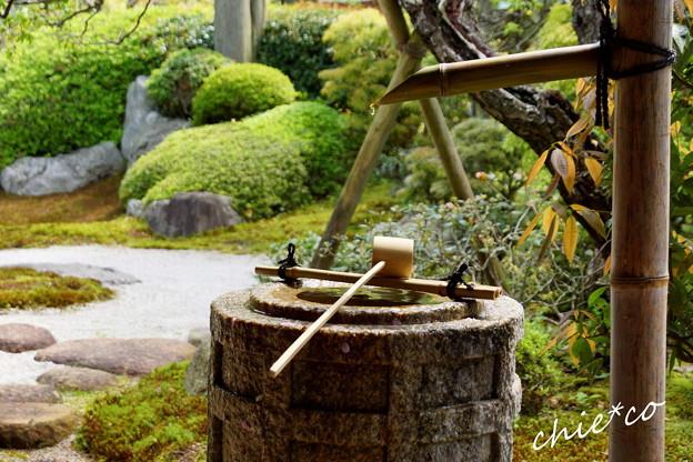 写真: 鎌倉-286