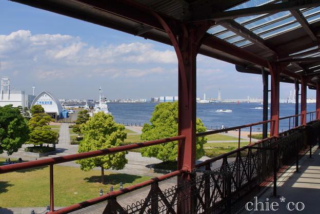 写真: Yokohama-354