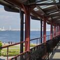 写真: Yokohama-296