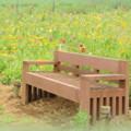 写真: 花菜ガーデン-203